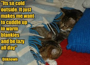 """""""Its so cold outside. It just makes me want to cuddle up  in warm blankies  and be lazy  all day"""""""