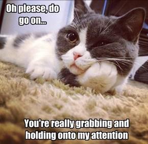 Oh please, do go on...