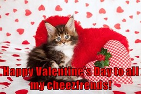 Happy Valentine's Day to all my cheezfrends!