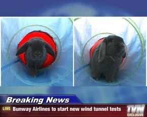Breaking News - Bunway Airlines to start new wind tunnel tests