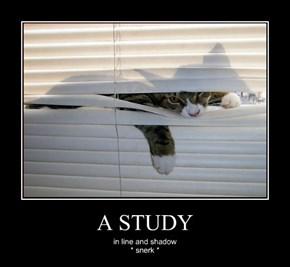 A STUDY