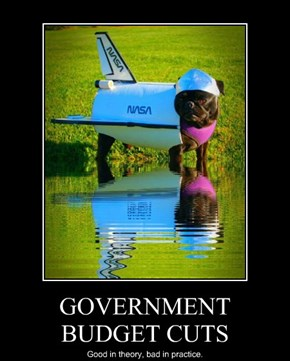 GOVERNMENT BUDGET CUTS