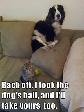 Back off. I took the dog's ball, and I'll take yours, too.