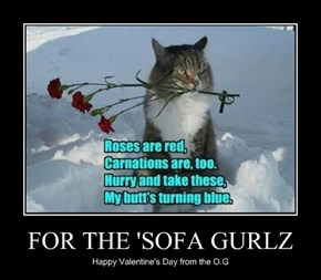 FOR THE 'SOFA GURLZ