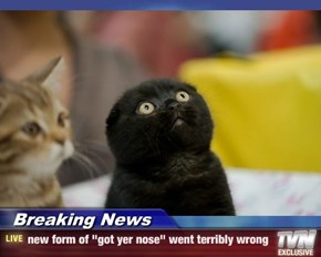 """Breaking News - new form of """"got yer nose"""" went terribly wrong"""