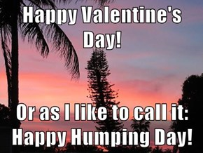 Happy Valentine's Day!  Or as I like to call it: Happy Humping Day!