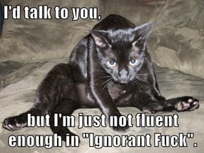 "I'd talk to you,  but I'm just not fluent enough in ""Ignorant f*ck""."