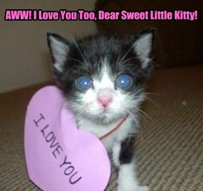 AWW! I Love You Too, Dear Sweet Little Kitty!