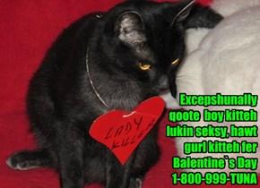 Excepshunally  qoote  boy kitteh lukin seksy, hawt gurl kitteh fer Balentine`s Day  1-800-999-TUNA