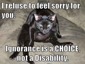 I refuse to feel sorry for you.  Ignorance is a CHOICE, not a Disability.