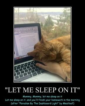 """""""LET ME SLEEP ON IT"""""""
