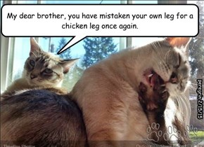 My dear brother, you have mistaken your own leg for a chicken leg once again.