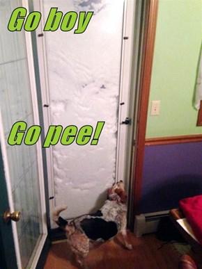 Go boy Go pee!