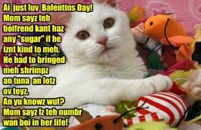 "Ai  just luv  Balentins Day! Mom sayz teh  boifrend kant haz any ""sugar"" if he  iznt kind to meh.  He had to bringed  meh shrimpz   an tuna  an lotz   ov toyz. An yu knowz wut? Mom sayz Iz teh numbr wan boi in her life!"