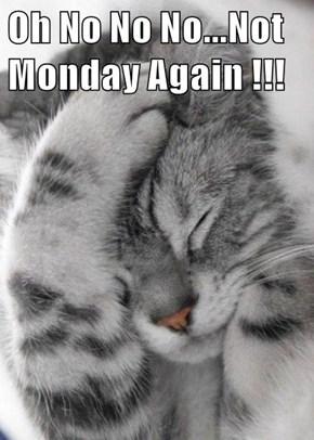 Oh No No No...Not Monday Again !!!