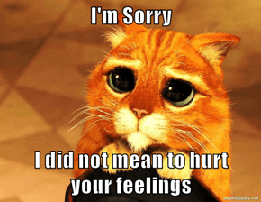 I'm Sorry  I did not mean to hurt       your feelings
