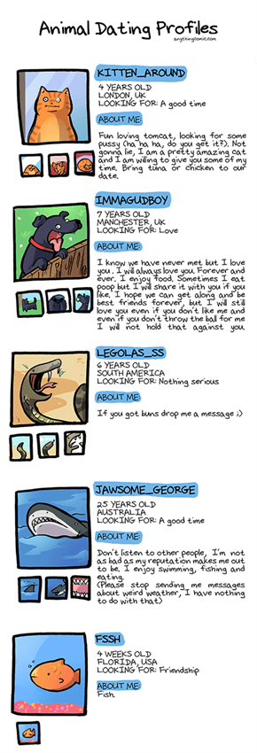 What If Animals Had Online Dating Profiles