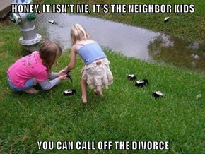HONEY, IT ISN'T ME, IT'S THE NEIGHBOR KIDS  YOU CAN CALL OFF THE DIVORCE