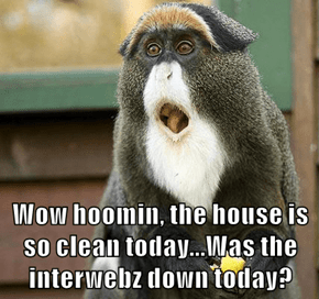 Wow hoomin, the house is so clean today...Was the interwebz down today?