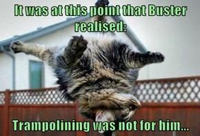 Despite the dog's assurances...