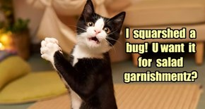 I  squarshed  a  bug!  U want  it  for  salad  garnishmentz?