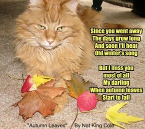 """""""Autumn Leaves"""" By Nat King Cole"""