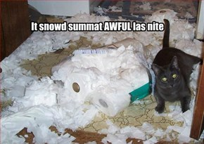 It snowd summat AWFUL las nite
