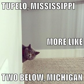 TUPELO, MISSISSIPPI MORE LIKE TWO BELOW, MICHIGAN