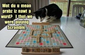 Wot  du  u  mean  prabz  iz  nawt  a  wurd?    I  thot  we  were  playing  Scramble.