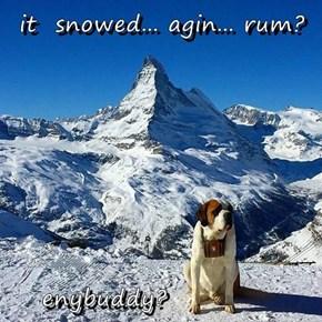 it  snowed... agin... rum?        enybuddy?