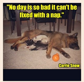 """""""No day is so bad it can't be fixed with a nap."""""""