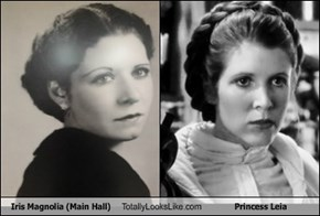 Iris Magnolia (Main Hall) Totally Looks Like Princess Leia