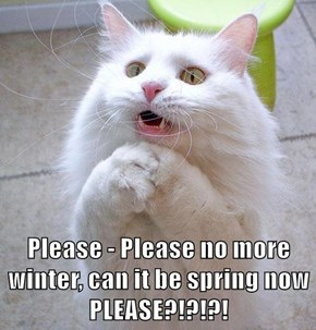 Please - Please no more winter, can it be spring now PLEASE?!?!?!