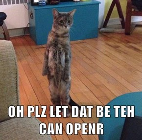 OH PLZ LET DAT BE TEH CAN OPENR