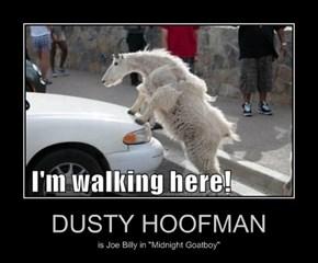 DUSTY HOOFMAN