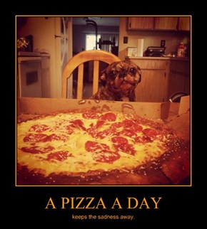 A PIZZA A DAY