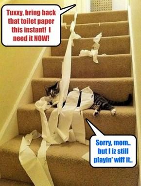 It iz most important dat all hoomins provide der kitties wiff eggstensiv playtime..