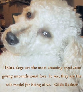 I think dogs are the most amazing creatures; giving unconditional love. To me, they are the role model for being alive. ~Gilda Radner