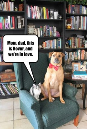 Mom, dad, this is Rover, and we're in love.