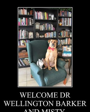 WELCOME DR WELLINGTON BARKER AND MISTY.