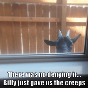 There was no denying it...        Billy just gave us the creeps