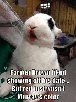 Farmer Brown liked showing off his date...               But red just wasn't Murray's color