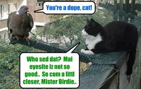 Kittie senses hims will hab a wonnerful meal bery soon..