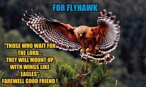 FOR FLYHAWK