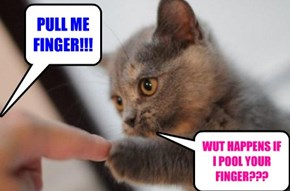 PULL MY FINGER!!!