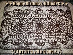 ♥ ♥ Happy Birthday, littleAPC ♥ ♥  { { f u r rrr g y H u g ggg s } }