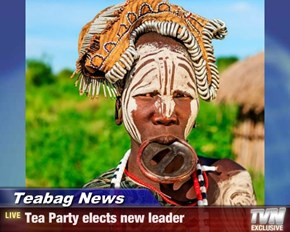 Teabag News - Tea Party elects new leader