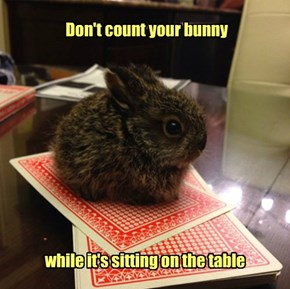What if You Lose by a Hare?