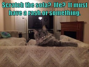 Scratch the sofa?  Me?  It must have a rash or something.
