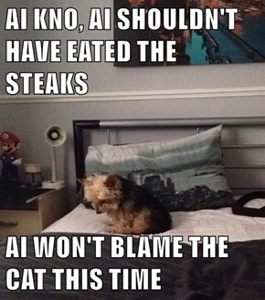 AI KNO, AI SHOULDN'T HAVE EATED THE STEAKS  AI WON'T BLAME THE CAT THIS TIME